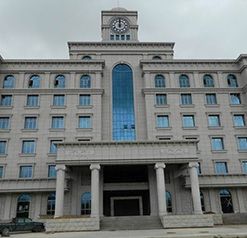 珠海羅西尼表業廠房白蟻預防