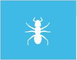 紅火蟻防治
